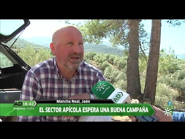 Apicultores Pintarré - Andalucía Directo