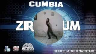 Cumbia Ziriguidum 2015 - (Audio + Video Dj Pucho Mastermix)