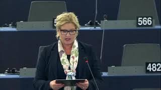 Karin Karlsbro 26 Nov 2019 plenary speech on Public discrimination and hate speech