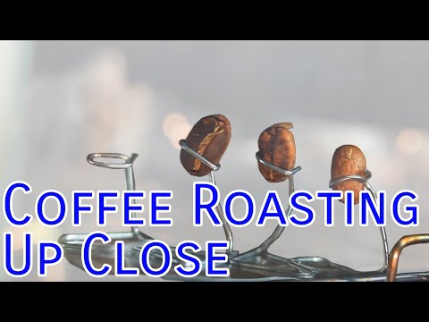 Coffee Roasting Up Close: The Roast Process in a Toaster Oven