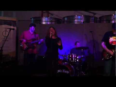 Coyote Kings featuring Michelle ( Mush ) Morgan, Only Love I know