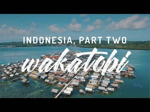 Indonesia, Part Two - Wakatobi, Sulawesi