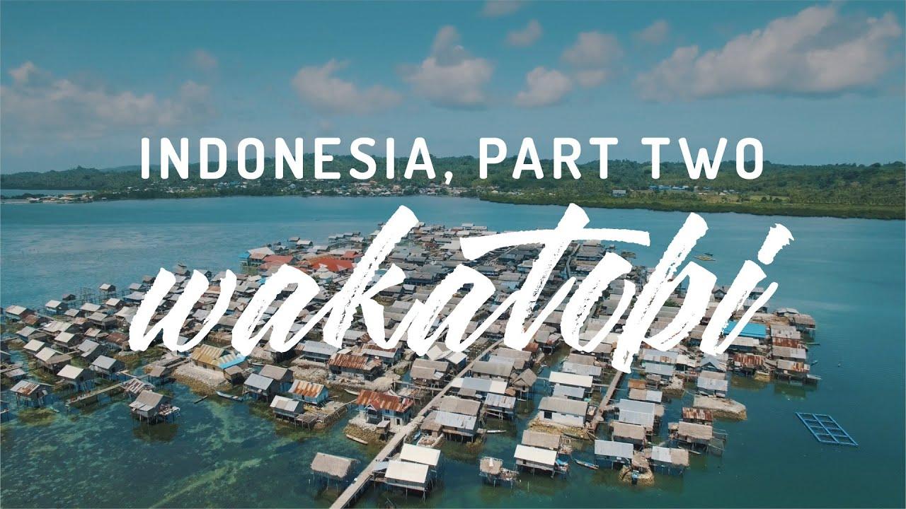 Indonesia, Part Two - Wakatobi, Sulawesi - YouTube