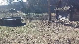 видео Благоустройство земельного участка