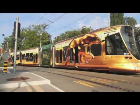 Habillage autocollant du tram doré BBGI - REMARQ