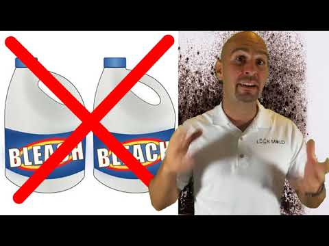 Black Mold - How To Kill Toxic Mold In Under 5 Mins!