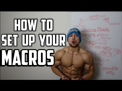 Nutrition 101: Macronutrient Set Up Guide (5 Minutes or Less)