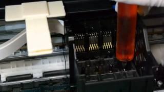 Как прочистить печатающую головку Epson