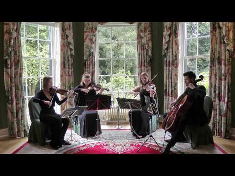 Can You Feel The Love Tonight (The Lion King) Wedding String Quartet