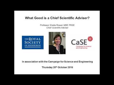 What Good is a Chief Scientific Advisor