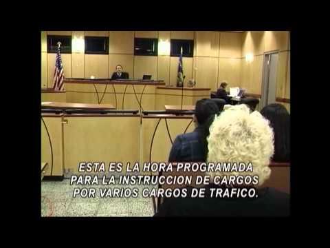 Tribunal Municipal