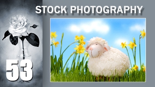 53.  Stock Photo Сток. Живой фон или как обогнать конкурентов на стоке