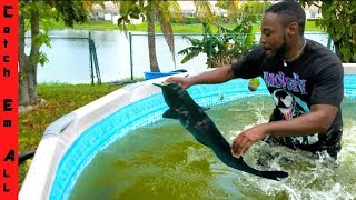 HAND FISHING for CATFISH in POOL!