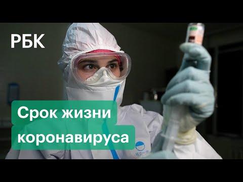 Где и сколько живет коронавирус?