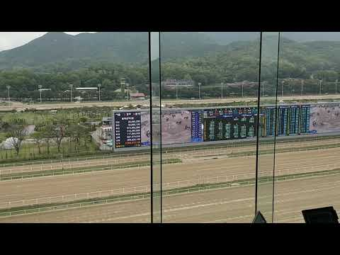 Asian Racing Conference 2018 - Seoul Racecourse Park and Whinny World
