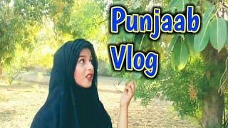 Punjaab Village Vlog | Daily Vlog | Vloging | Vlogs | Chikni art | Family Vlogs | Chikni art