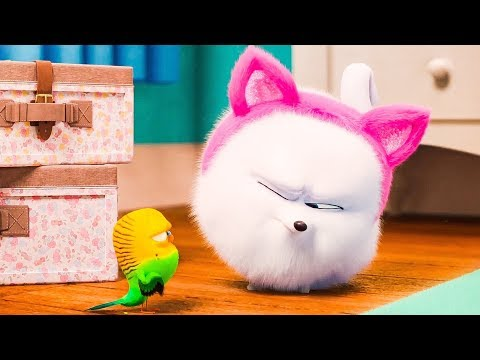 The Secret Life Of Pets 2 All Clips & Trailers (NEW 2019) HD