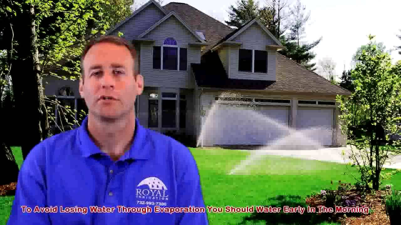 Royal Irrigation NJ Says Morning is Best for Garden Irrigation and