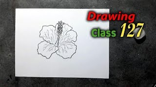 How to Draw Easy China Rose step by step || Drawing Class 127