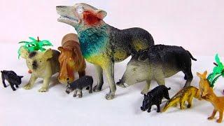 Животные распаковка игрушек Волк, Бегемот, Коала ...