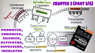Promoter, enhancer, silencer - Chapter 3(part3/4) Guyton and Hall Text Book of Medical Physiology