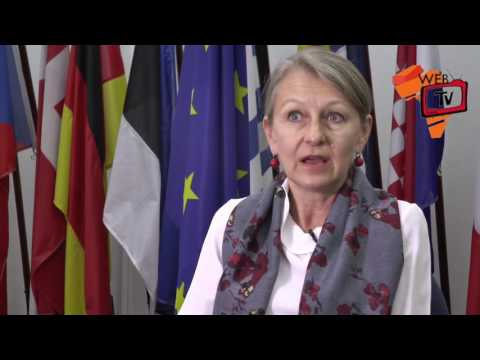 EU Ambassador to Liberia: Systematic Weakness in Liberia's H
