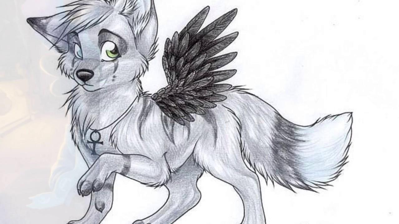 Картинки аниме животных с крыльями для срисовки
