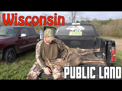 BOWHUNTING DEER   PUBLIC LAND   WISCONSIN   BBD