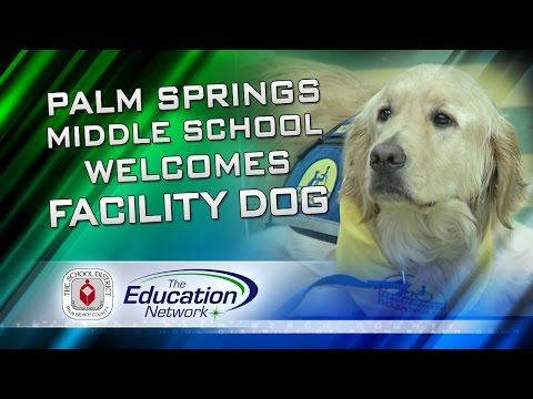 Palm Springs Community Middle School welcomes facility dog