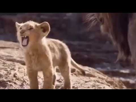 Lion King In Spanish!!😂😂🇲🇽🇲🇽(Replays)