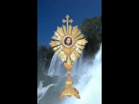Testimonio de catalina sobre la santa misa