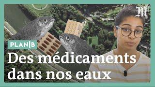 Comment les médicaments polluent l'environnement ? #PlanB