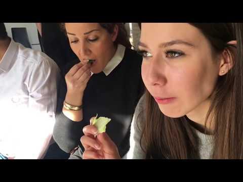 Norouz Vlog 2017 (Persian New Year 1396)