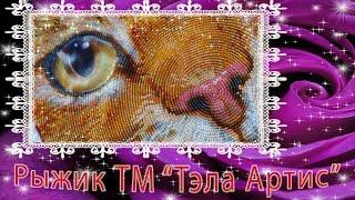 Рыжик ТМ