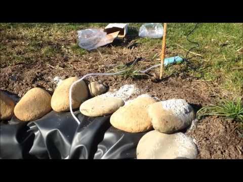 Realizzazione di un laghetto per pesci rossi antizanzare for Pesci rossi laghetto