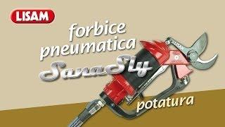 Forbice Pneumatica Sana Sly per potatura Kiwi