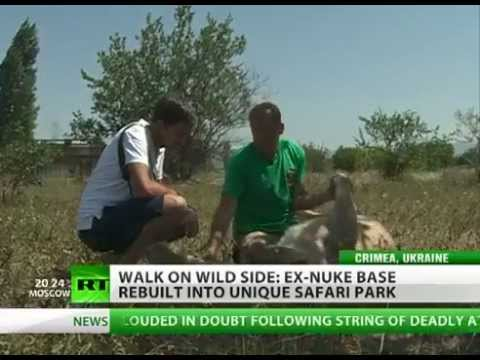 Ex-Soviet military base turned into safari park with nuke shelter karaoke