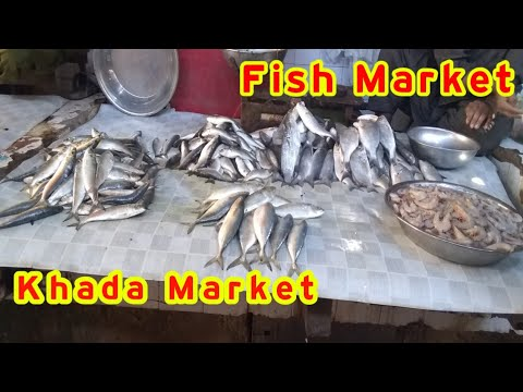 Latest Rates Of Fish And Prawn Alive Fish Khadda Market On 30 Nov 2019