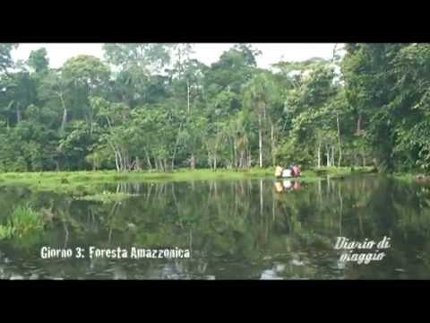 Diario di viaggio: Ecuador (Foresta Amazzonica)