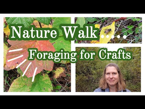 Nature Walk || Foraging for Crafts and DIYs