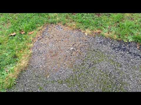 Comment Se Debarrasser De La Mousse Sur Une Terrasse Au Sol Sans Produits Chimique Ni Sel Javel Youtube