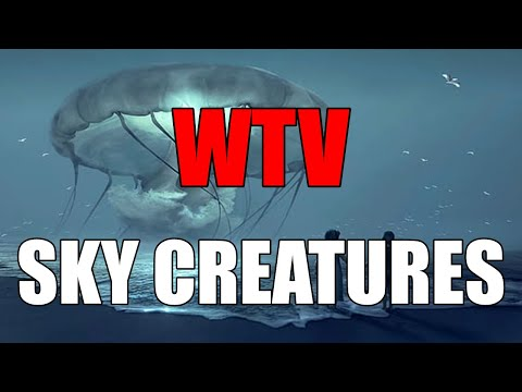 What You Need To Know About SKY CREATURES