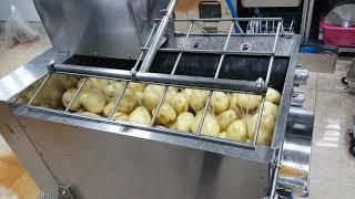 구근탈피기 - 감자탈피작업