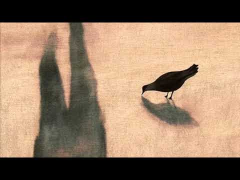 Crow Communes By Ted Hughes Read By A Poetry Channel