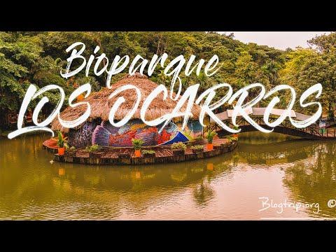 Visita BIOPARQUE LOS OCARROS Villavicencio Colombia 🐒