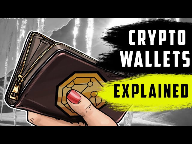 Crypto Wallets : All You Need To Know (Beginner's guide)