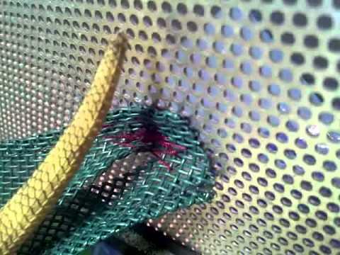 bearded dragon on hammock   youtube  rh   youtube