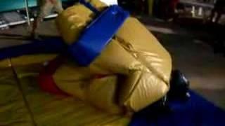 Combat de sumos