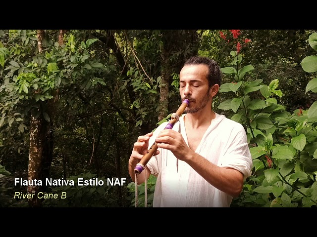 Flauta nativa estilo NAF - River Cane B
