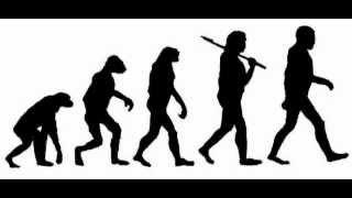Gross Evolution   Human Resources